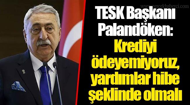 TESK Başkanı Palandöken'den çağrı: Krediyi ödeyemiyoruz, yardımlar hibe şeklinde olmalı